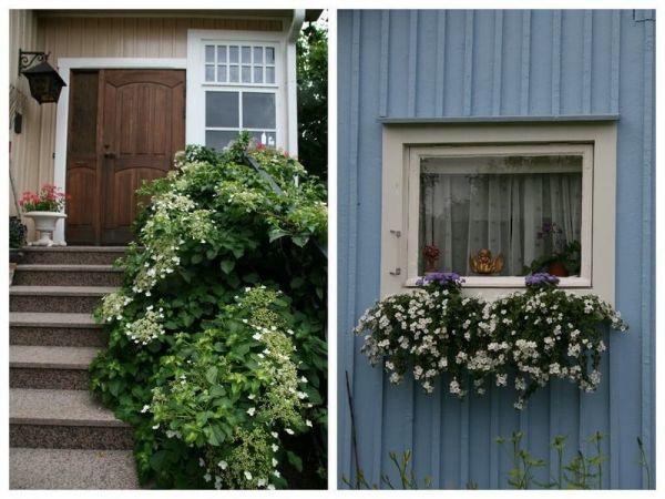 Финский сад: ничего лишнего