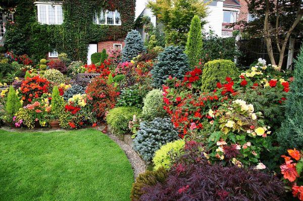 Идеи сада для ленивых. Можно не ухаживать — растет само!