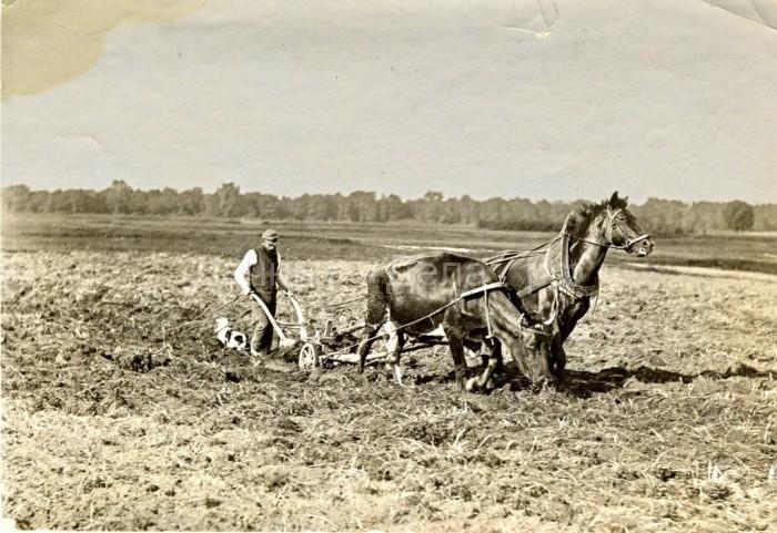 Как работали и отдыхали русские крестьяне: Фотографии начала XX века 9