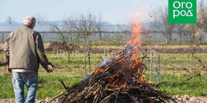 Сжигание мусора на своём участке