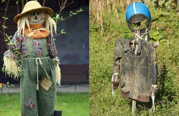 Подборка самых необычных, красивых и в то же время жутких огородных пугал современности