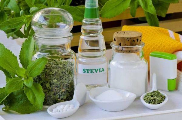 Стевия: как вырастить дома полезный заменитель сахара