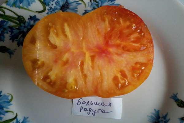 Описание сорта томата Большая радуга, его характеристика и урожайность